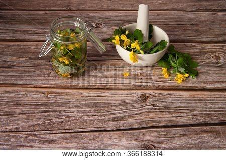 Herbal Alternative Medicine. Alcohol Tincture Of Celandine For Treatment. Celandine Leaves In A Mort