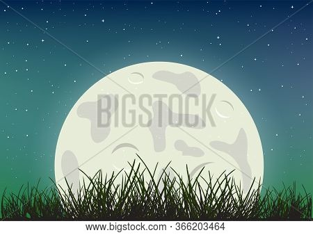Moonlight And Grass Silhouette On Night Sky