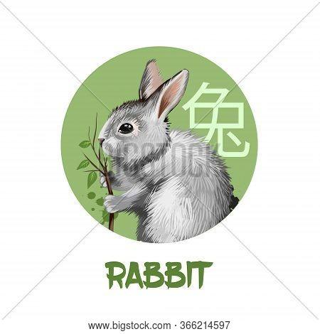 Rabbit Chinese Horoscope Character Isolated On White Background. Symbol Of New Year 2023. Pet Bunny