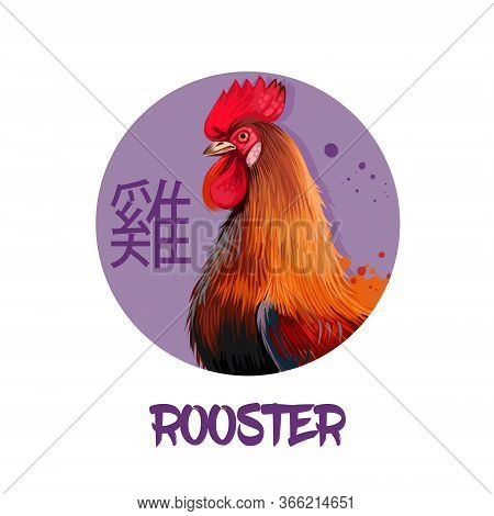 Rooster Chinese Horoscope Character Isolated On White Background. Symbol Of New Year 2029. Pet Hen B