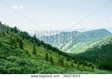Beautiful Aerial View To Green Forest Hillside And Great Mountains. Awesome Minimalist Alpine Landsc