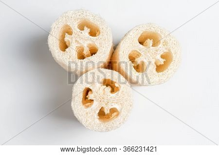 Luffa Loofah. Vegetable Sponge Extracted From The Luffa Plant On Light Background. Eco Friendly Loof
