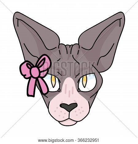 Cute Cartoon Sphynx Cat Face With Pink Bow Vector Clipart. Pedigree Exotic Kitty Breed. Purebred Dom