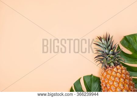 Beautiful Pineapple On Tropical Palm Monstera Leaves Isolated On Bright Pastel Orange Pink Backgroun