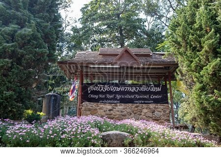 Chiang Mai, Thaiiland - January 26, 2019: View Of The Place Sign And Flowers Garden At Chiang Mai Ro