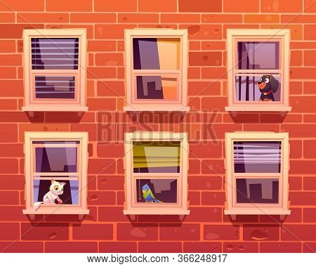 Pets In Windows, Cat, Dog And Parrot Sit On Windowsills Inside Of Room Looking Out. Brick Wall Facad