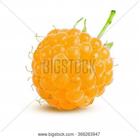 Raspberry Isolated On White Background Isolated. Whole Yellow Berry Closeup Ripe And Delicious. Fres