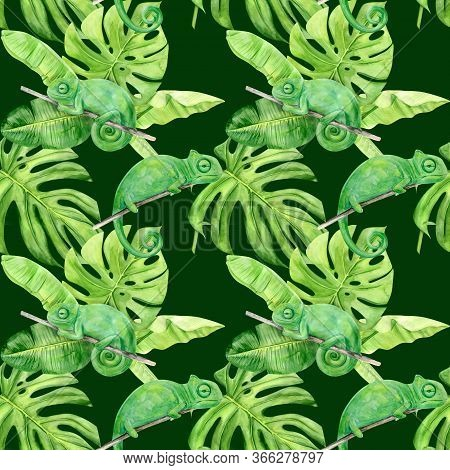 Watercolor Illustration Seamless Pattern Of Tropical Leaves And Chameleon. Perfect As Background Tex