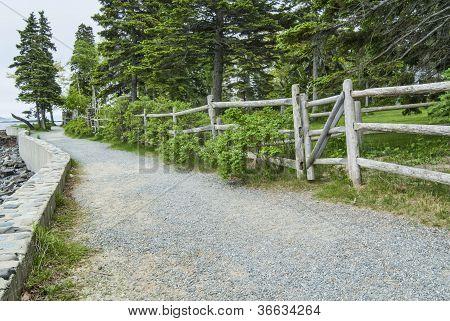 Waterside Path At Bar Harbor Maine