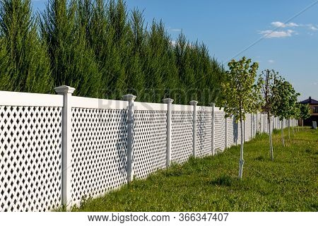 White Vinyl Fence In A Cottage Village. Tall Thuja Bushes Behind The Fence.
