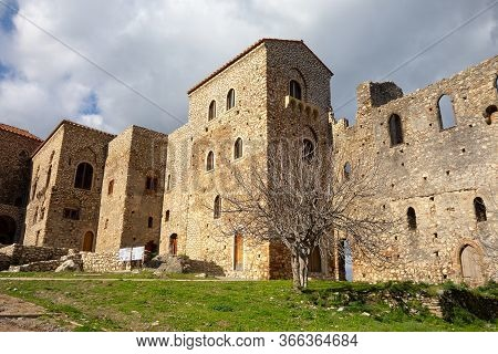 Palace Of Despots And A Leafless Tree In Archeological Site Of Mystra Near The Mystras City, Greece,