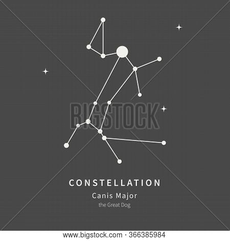 The Constellation Of Canis Major. The Great Dog - Linear Icon. Vector Illustration Of The Concept Of