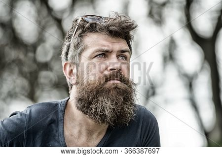 Man With Long Beard And Mustache Wears Sunglasses On Head, Defocused Background. Barbershop Concept.