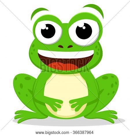 Green Toad Sits And Smiles On A White Background
