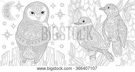 Coloring Pages. Beautiful Owl And Couple Of Lovely Birds In The Garden. Line Art Design For Adult Co