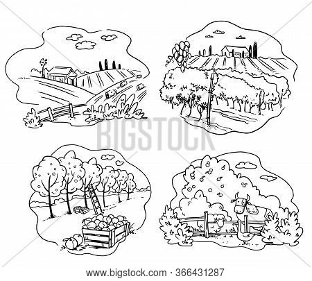 Set Of Farming Icons, Apple, Cattle Farm And Vineyard Vector Illustration
