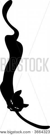 cartoon image of black cat isolated on white