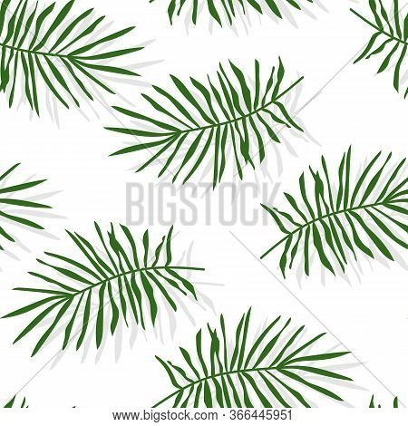 Green Tropical Palm Leaves Or Pine Branch Seamless Pattern. Limitless Background With Floral Flat Ca