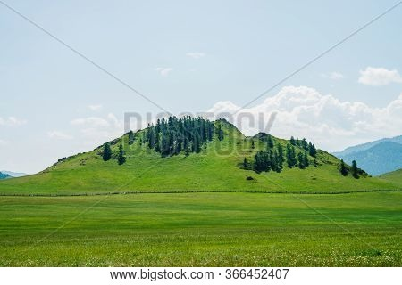 Beautiful Sunny Landscape With Green Forest Mountain Behind Vast Field With Long Wood Fence. Hill Wi