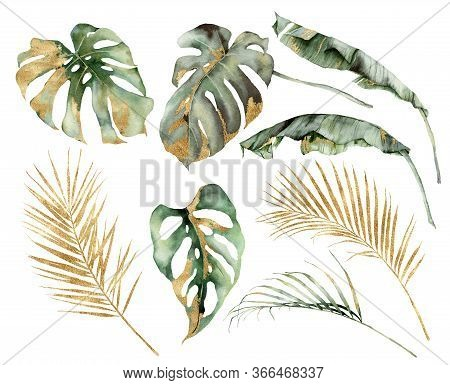 Watercolor Tropical Set With Banana, Palm And Monstera Golden Leaves. Hand Painted Branches And Twig