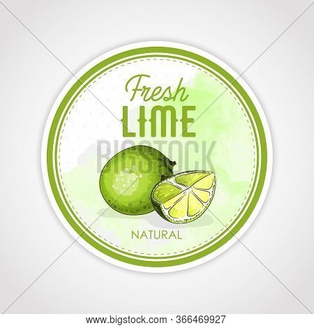 Round Label Or Sticker Design In Vintage Style With Lime Illustration. Fresh Natural Lime. For Natur