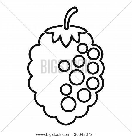 Rowan Blackberry Icon. Outline Rowan Blackberry Vector Icon For Web Design Isolated On White Backgro