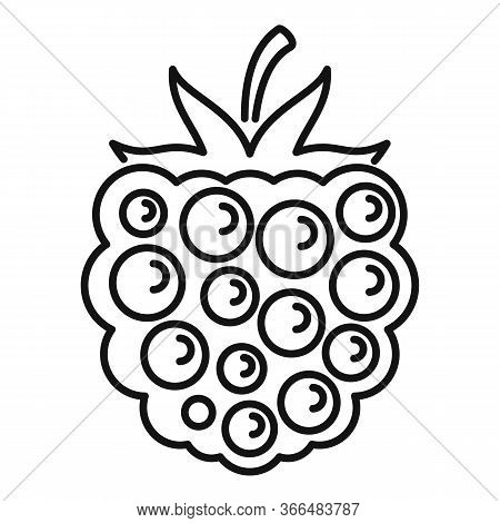 Blackberry Product Icon. Outline Blackberry Product Vector Icon For Web Design Isolated On White Bac