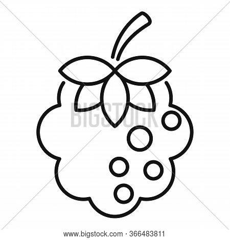 Summer Blackberry Icon. Outline Summer Blackberry Vector Icon For Web Design Isolated On White Backg