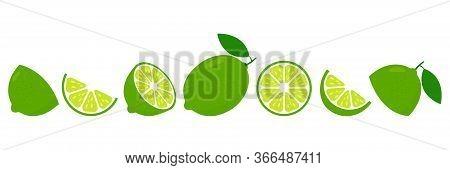 Lime Fresh Slices Set. Cut Limes Fruit Slice For Lemonade Juice Or Vitamin C Logo. Citrus Icons Vect