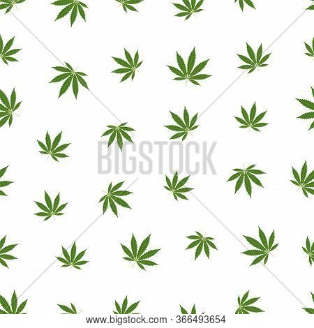 Cannabis Seamless Pattern. Marijuana Leaf, Green Weed Plant. Hashish Texture, Isolated White Backgro