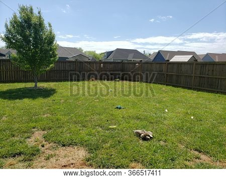 Back Yard with Dog Toy and Bone Mess in yard.