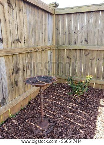Rusty Old Metal Birdbath in Mulch.