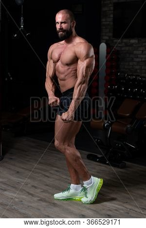 Handsome Muscular Man Flexing Muscles In Gym