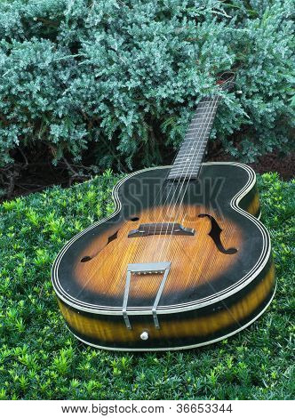Vintage Acoustic Guitar Lying On Landscaping