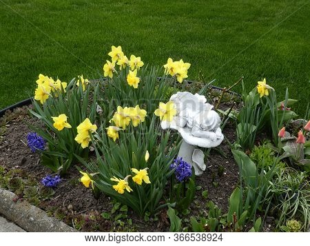 Yellow Narcissuses And Smallfigurine On The Flower Bed