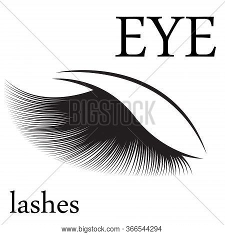 Eyelashes Logo For Beauty Salon Vector Illustration Isolated