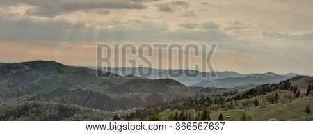 Magnificent Panoramic View The Coniferous Forest On The Mighty Carpathians Mountains And Beautiful B