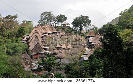 Traditional vilage in Bajawa