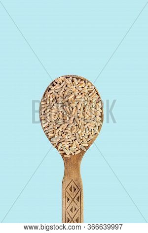 Raw Unpeeled Oats In A Wooden Spoon On A Blue Background