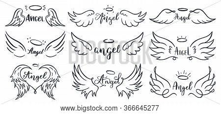 Wings Hand Drawn Lettering. Doodle Elegant Angel Wings Phrases, Sketched Flight Feather, Winged Ange