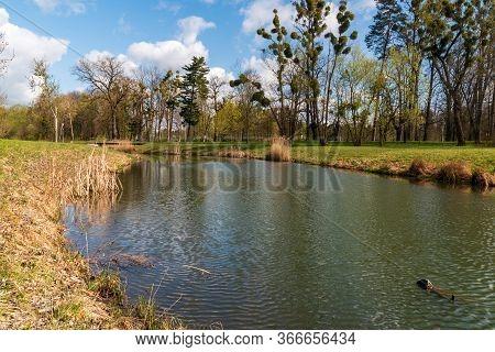 Mlynka Creek In Park Bozeny Nemcove Public Park In Karvina City In Czech Republic With Small Bridge