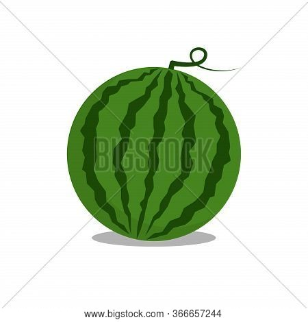 Watermelon Fruit Vector Illustration. Good For Food And Drink, Restaurant Or Summer Design. Flat Col