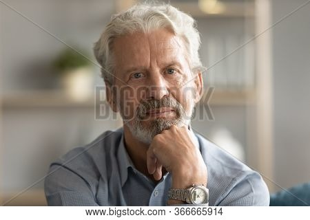 Portrait Of Thoughtful Pondering Middle Aged Hoary Man Touching Chin.