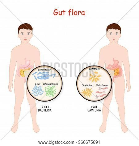 Good And Bad Bacteria. Gut Flora Of Children. Kids With Intestines And Different Forms Of Bacteria.