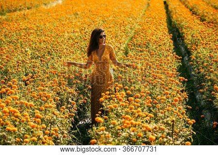 Beautiful Girl On A Flower Field. A Girl In A Yellow Dress Among Flowers. A Girl Walks Through A Flo