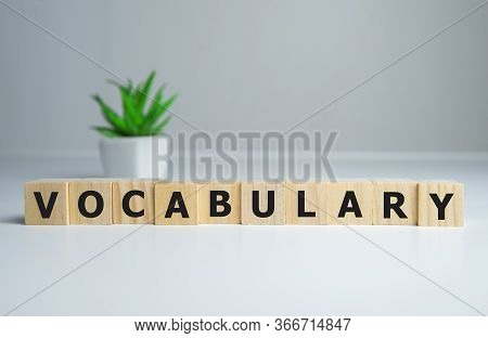 Vocabulary Word On Wooden Cubes, English Concept.
