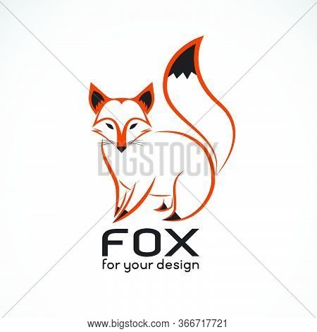 Vector Of Fox Design On White Background. Wild Animals. Fox Logos Or Icons. Easy Editable Layered Ve
