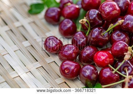 Red Cherries On A Wooden Surface. Juicy Cherries In The Orchard In A Summer Day. Sweet Fruits. Shall