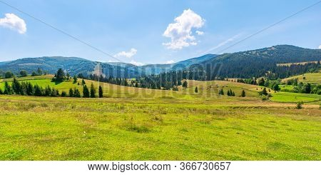 Mountainous Countryside At High Noon. Beautiful Rural Scenery With Trees And Fields On The Rolling H