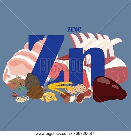 Zinc Healthy Nutrient Rich Food Vector Illustration